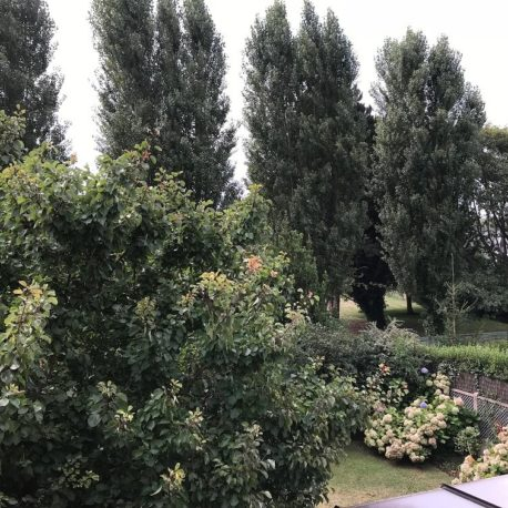 Vue jardin maison Villers sur Mer – ST Immobilier Elbeuf