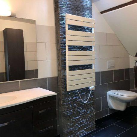 Salle de bains – F2 bis – Caudebec les Elbeuf – ST Immobilier Elbeuf