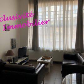 Salle de séjour-salon - appartement F3 bis avec mezzanine - Elbeuf - Exclusivité - ST Immobilier Elbeuf